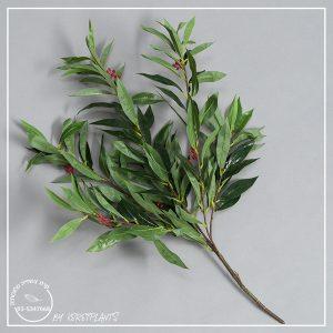 ענף פלפלון