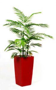 צמחייה מלאכותית של חברת קרת צמחייה מלאכותית