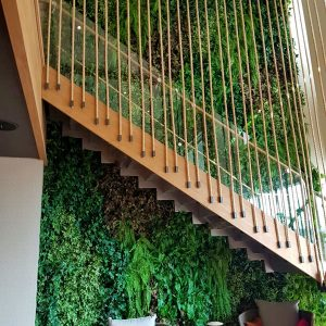 קיר ירוק של קרת צמחייה מלאכותית