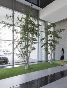 תמונה של פרויקט עם צמחייה מלאכותית של חברת קרת צמחייה מלאכותית