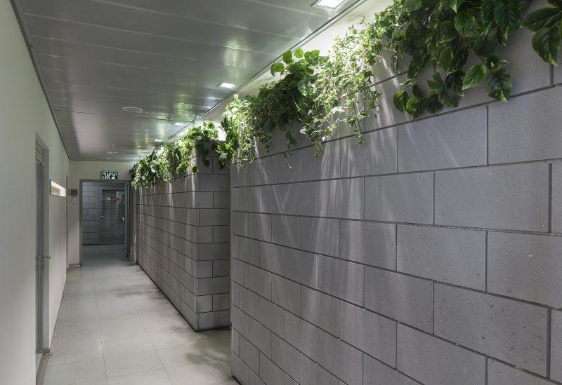 יתרונות עיצוביים של צמחיה מלאכותית