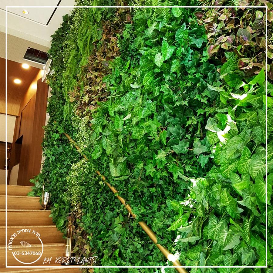 קירות ירוקים וגינון ורטיקלי
